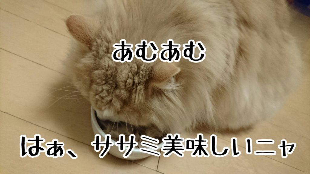 ササミはうちの猫の大好物なので、ちゃんすけも喜んでむちゃむちゃ食べる
